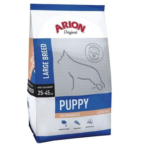 Arion puppy large salmon 12.jpg